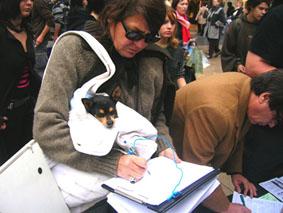 bilan stand fourrure + noël sans cruauté Acta_fourure_petition